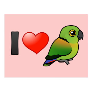 I Love Black-collared Lovebirds Postcard