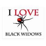 I Love Black Widows Postcard