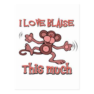 I love Blaise Postcard