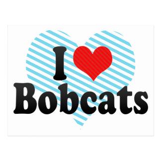 I Love Bobcats Postcard