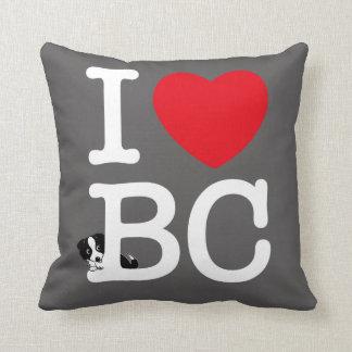 I love border collie! Cushion