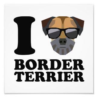 I Love Border Terrier -1- Photo Print