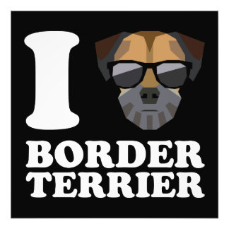I Love Border Terrier -2- Photo Print