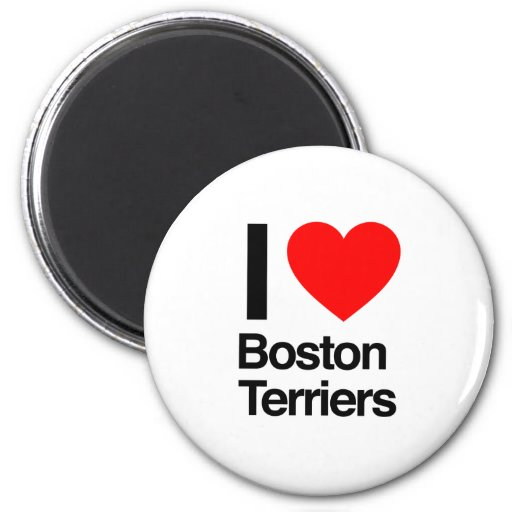 i love boston terriers magnets