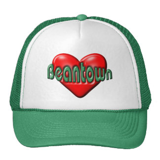 I Love Boston Trucker Hat