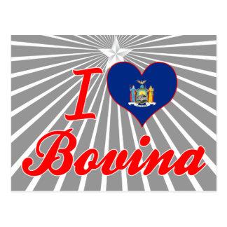 I Love Bovina, New York Postcard