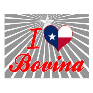 I Love Bovina, Texas Postcard