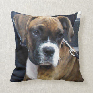 I LOVE BOXERS pillow