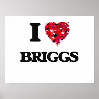 I Love Briggs Poster