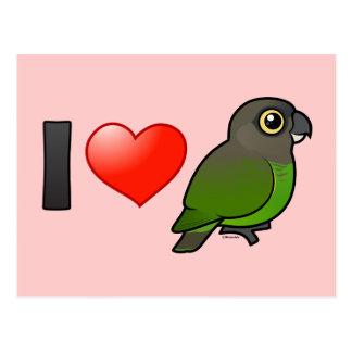 I Love Brown-headed Parrots Postcard