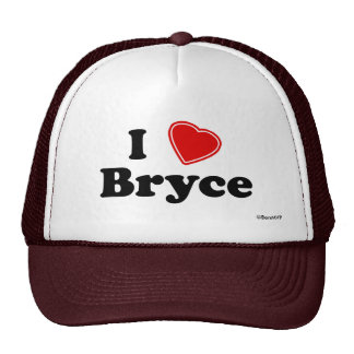 I Love Bryce Mesh Hats