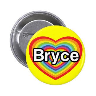 I love Bryce: rainbow heart Pins