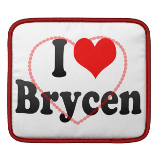 I love Brycen Sleeves For iPads