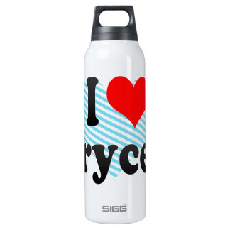 I love Brycen 16 Oz Insulated SIGG Thermos Water Bottle