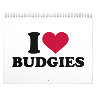 I love budgies calendar