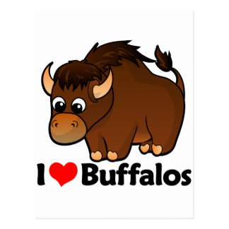 I Love Buffalos Postcard