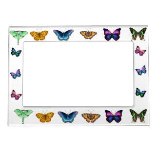 I Love Butterflies Magnetic Frame