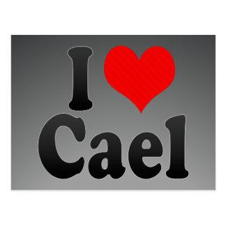 I love Cael Postcard