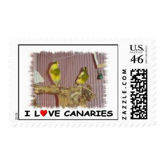 I love canaries stamp