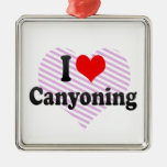 I love Canyoning Christmas Ornament