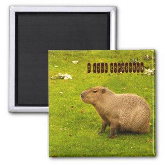 I love Capybaras Magnet