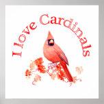 I Love Cardinals Poster