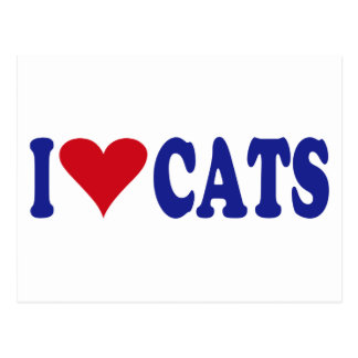 I Love Cats Postcard