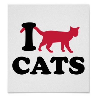 I love cats poster