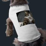 "I love cats shirt<br><div class=""desc"">Cat on my back!</div>"