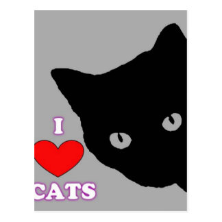 I LOVE CATS TSHIRT Happy Fun Text  & Red Heart Postcard