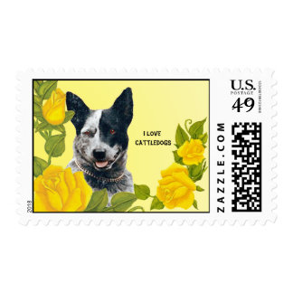 I Love Cattle Dogs & Yellow Roses Postage
