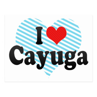 I Love Cayuga Postcard