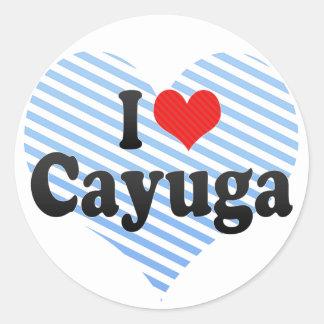 I Love Cayuga Stickers