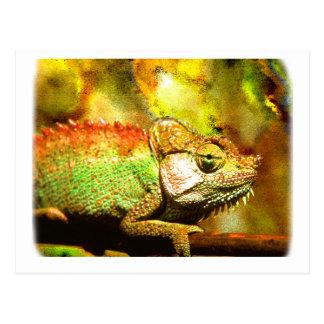 i love chameleons Digital art Postcard
