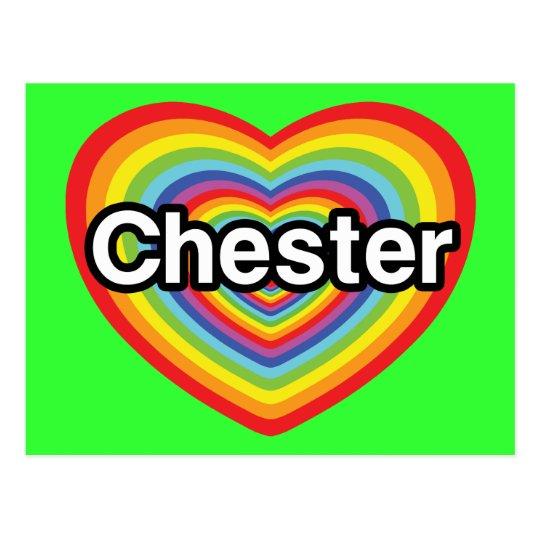 I love Chester: rainbow heart Postcard