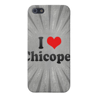 I Love Chicopee United States Cases For iPhone 5