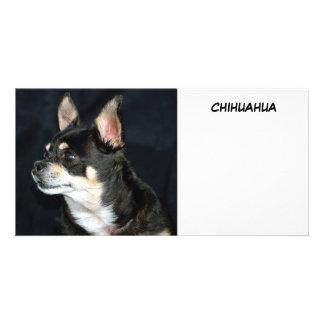 I Love Chihuahuas Card