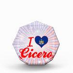 I Love Cicero, New York Award