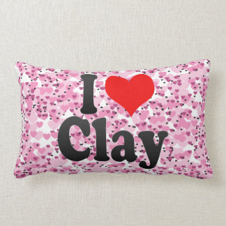 I love Clay Lumbar Pillow