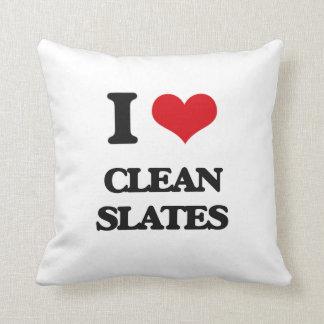 I love Clean Slates Pillow