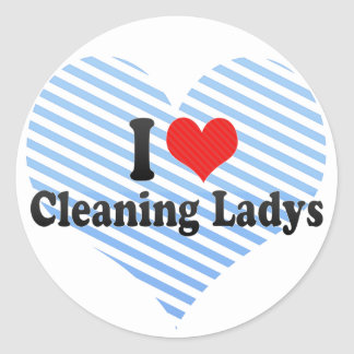 I Love Cleaning Ladys Sticker