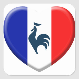 I love cock France flag Square Sticker