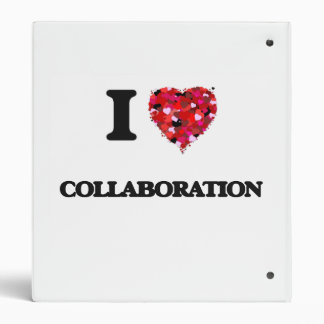 I love Collaboration Binders