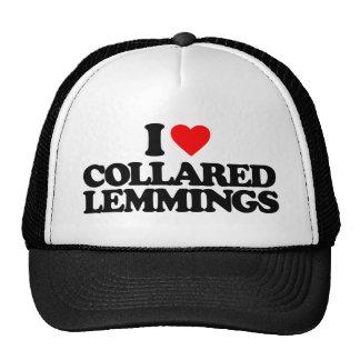 I LOVE COLLARED LEMMINGS MESH HAT