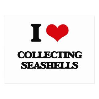 I love Collecting Seashells Postcard
