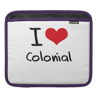 I love Colonial iPad Sleeves