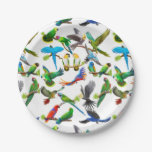 I Love Colorful Parrots Paper Plates 7 Inch Paper Plate