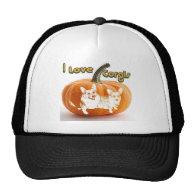 I Love Corgis-OC & D Pumpkin Hat