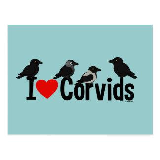 I Love Corvids Postcard