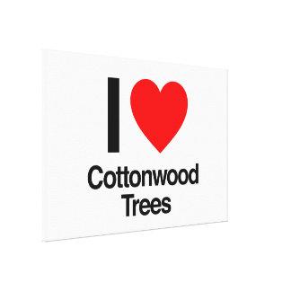 i love cottonwood trees canvas print